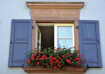 Fenster mit Klappläden & Blumen